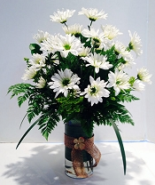 Dashing Daisies
