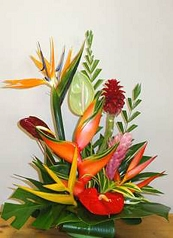 Florist Choice Tropical