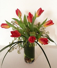 Spring Tulips (Color will vary)